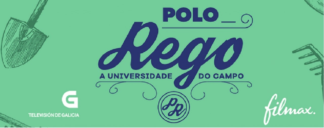 Polo-Rego